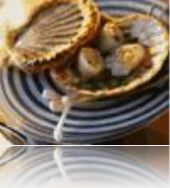 14739-oysters-on-the-french-way.jpg